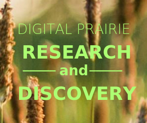dp-research